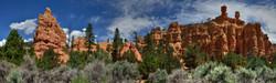 Red Canyon Area, Utah