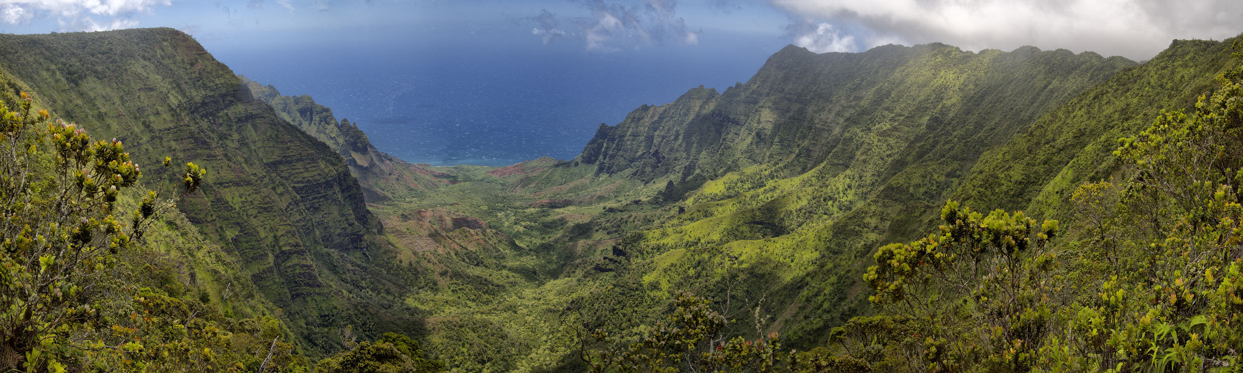 Kakalau Valley#2, Kauaʻi HI
