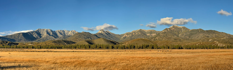 San Jacinto National Forest, CA