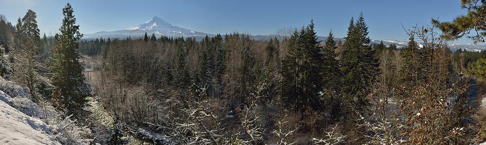 Mt Hood Panorama