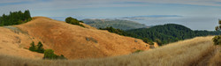 Mt Tamalpias Foothills.jpg