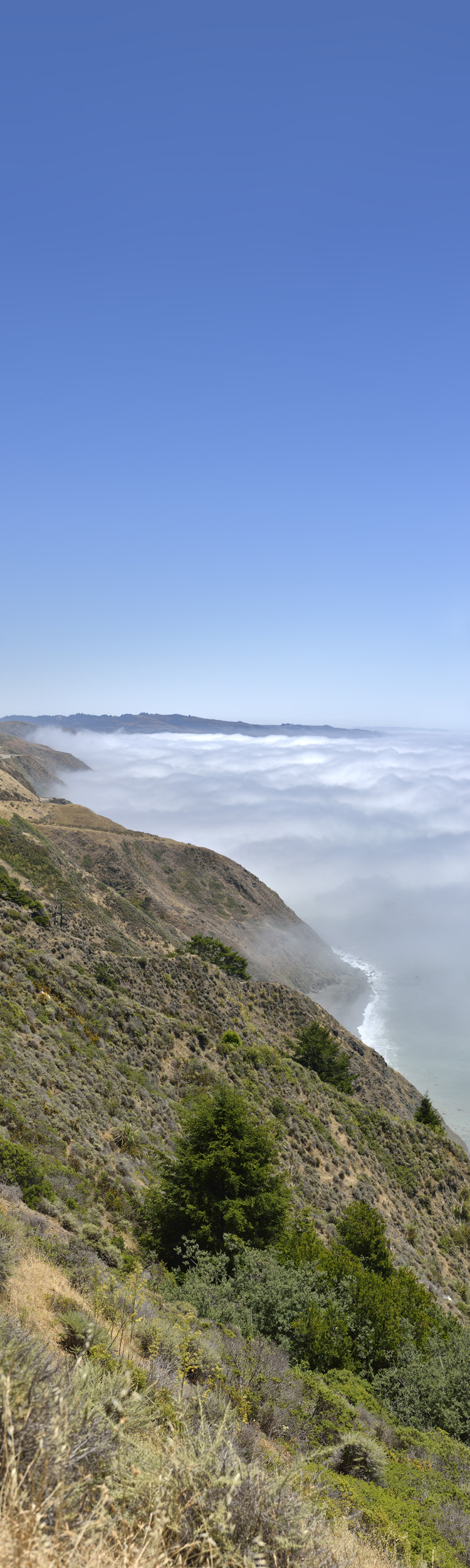 Fog on Coast, California