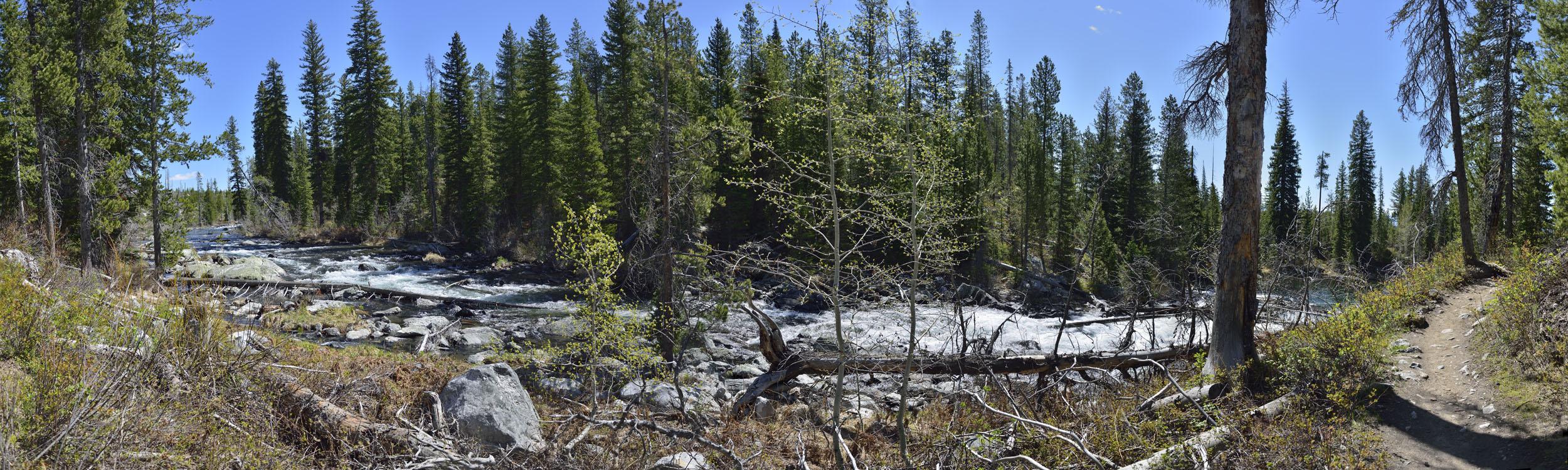 Trail along Cascade Creek