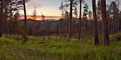 Sunset in Custer State Park, South Dakota