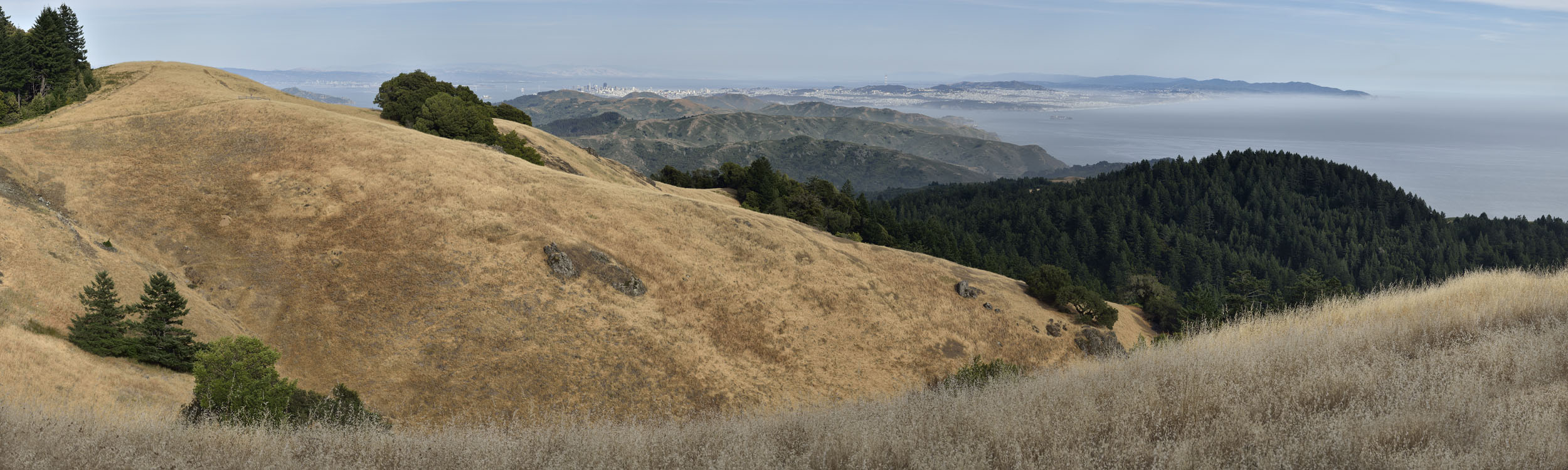 Mt. Tamalpias Foothills, CA