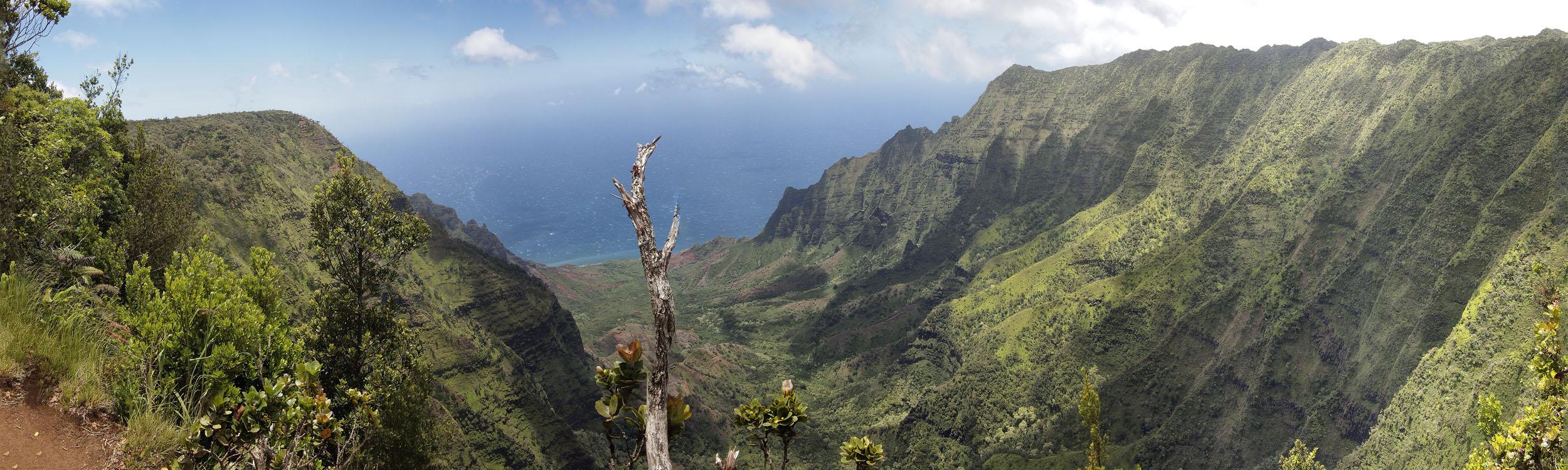 Kakalau Valley#1,Kauaʻi HI
