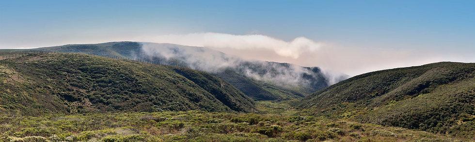 Tamales Bay Fog Rising, CA
