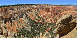 Boulder Overlooking Bryce Canyon