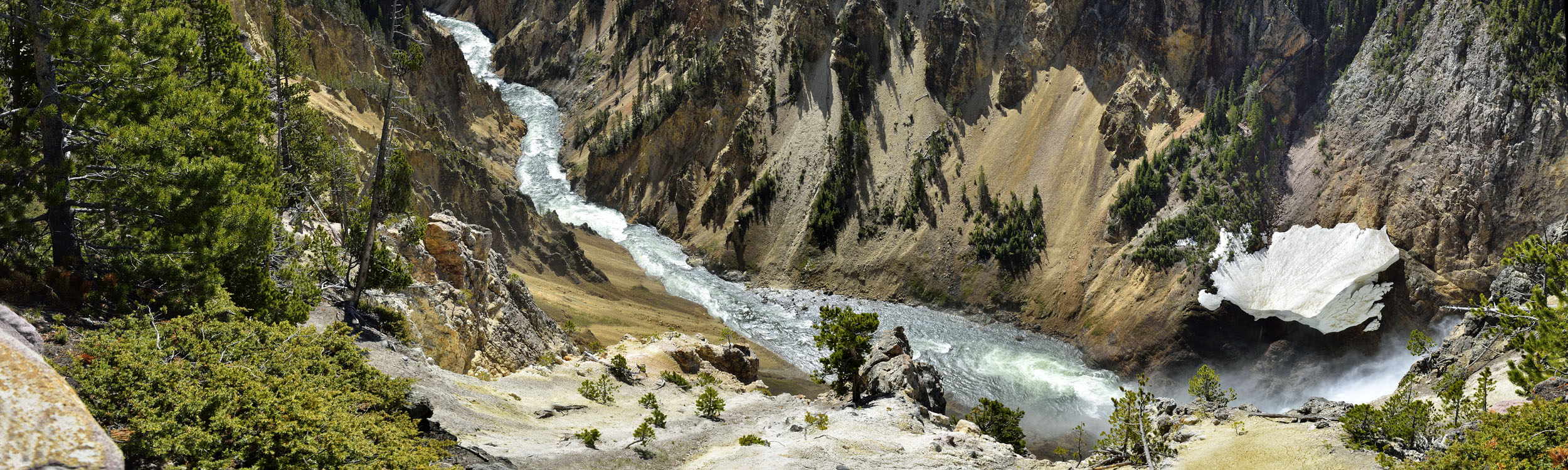 Yellowstone Canyon in Spring