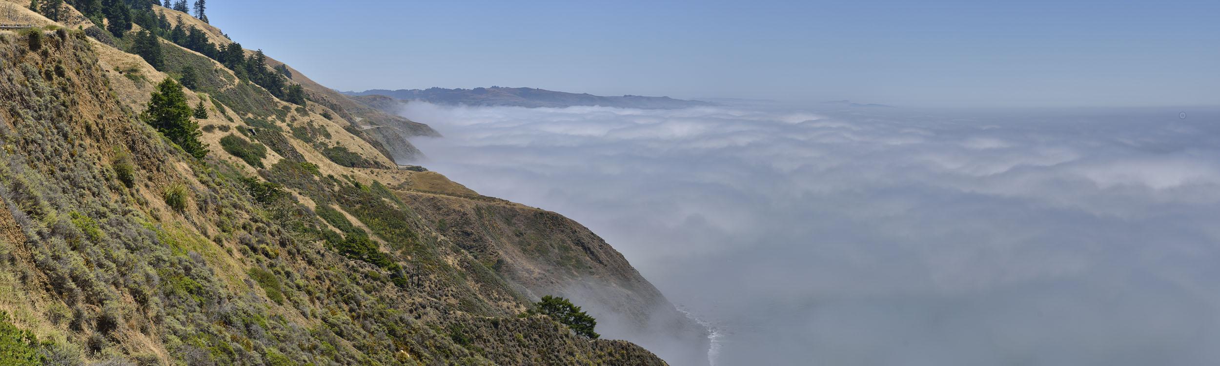 Foggy Morning on Coastal Highway, CA