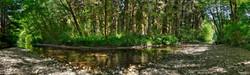 Prairie Creek, Redwood NP