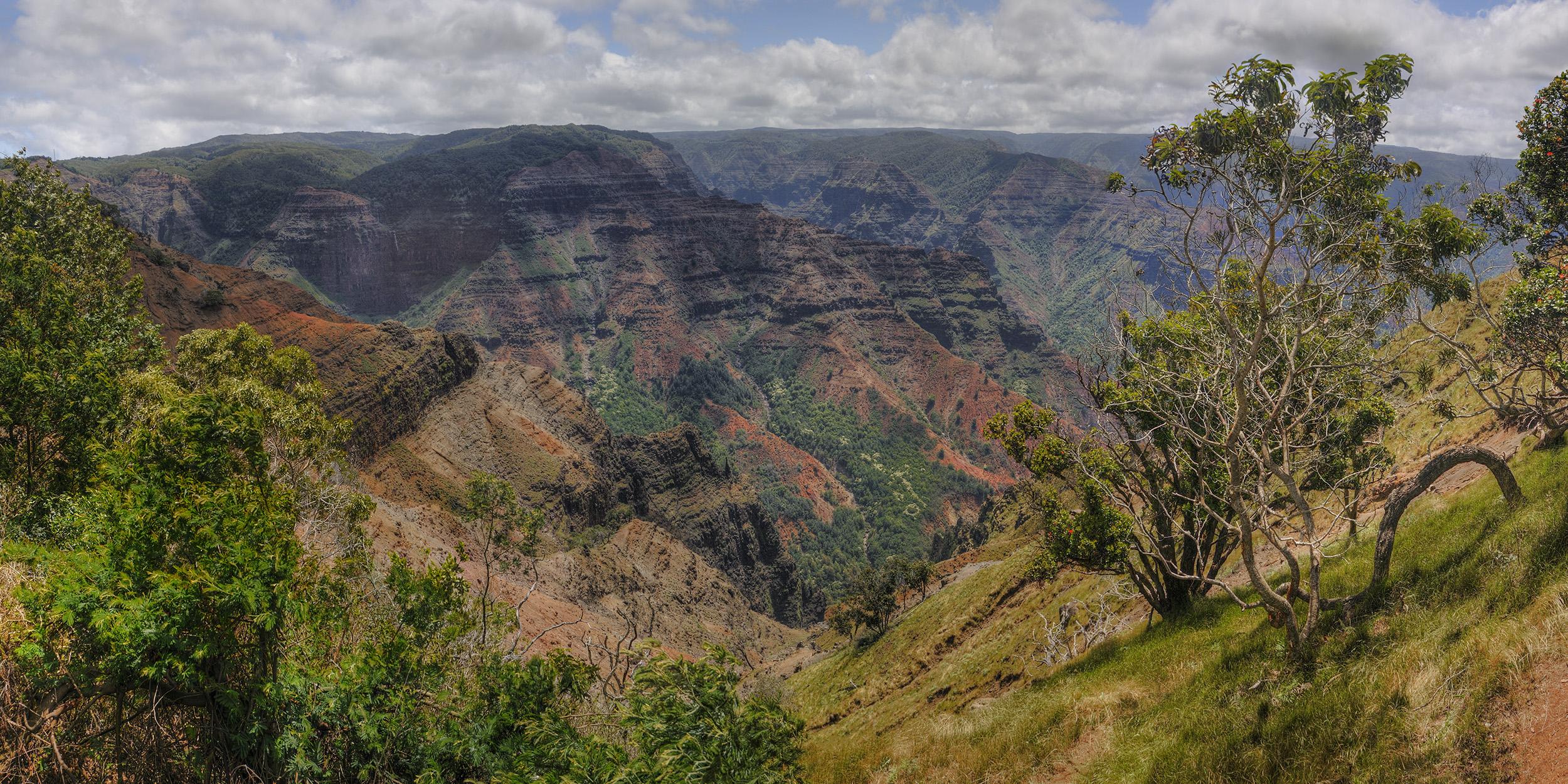 Waimea Canyon Looking East
