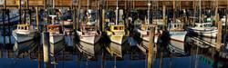 Vessels at Fisherman's Wharf
