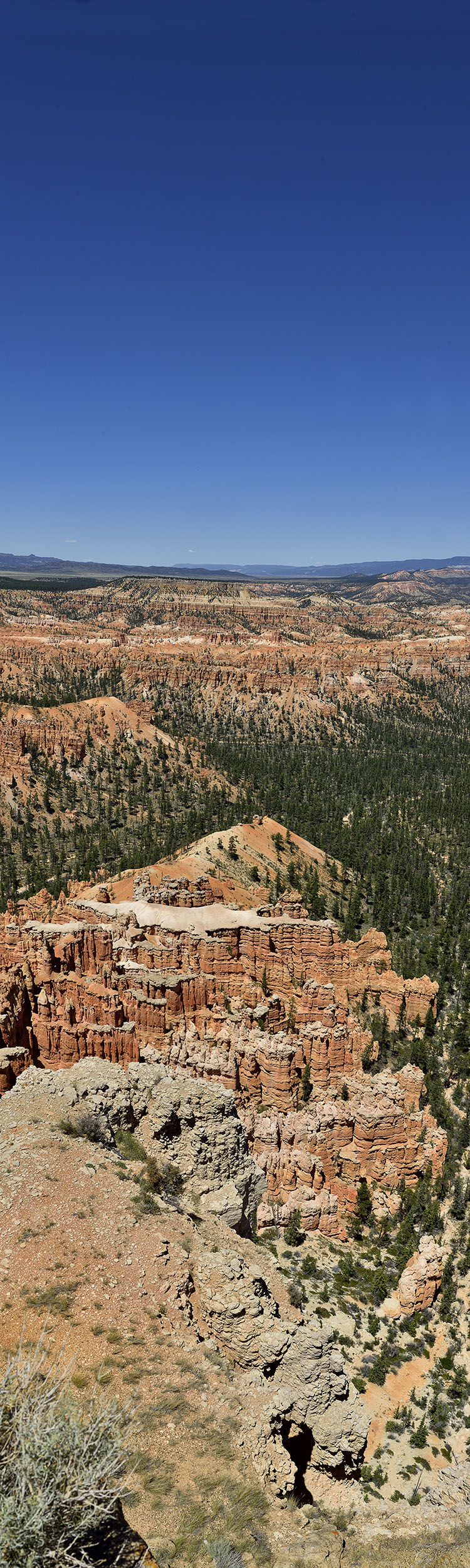 View from Bryce Canyon Rim,