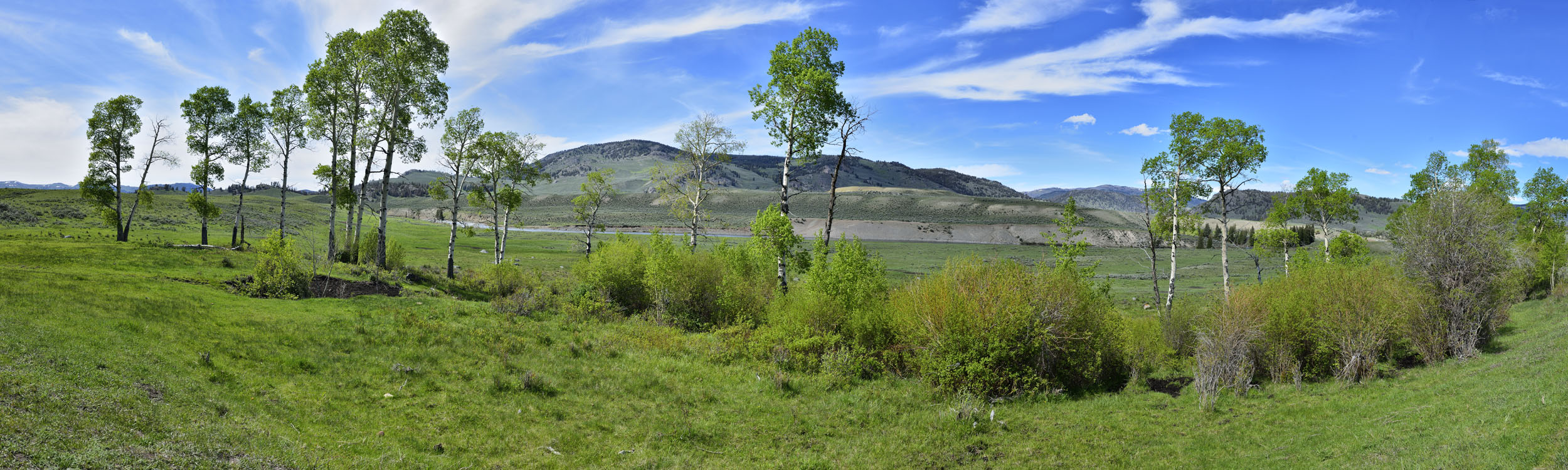 Larimar Valley, Yellowstone NP