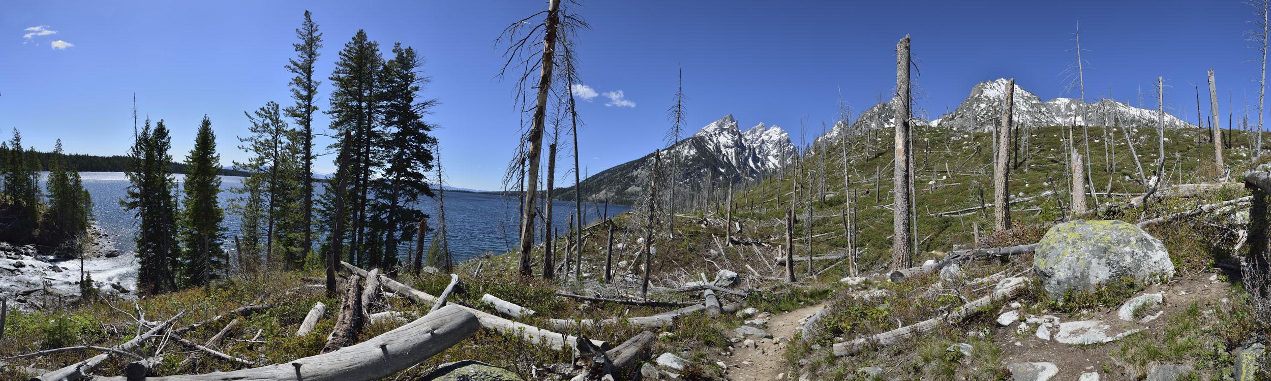 Jenny Lake and Grand Tetons