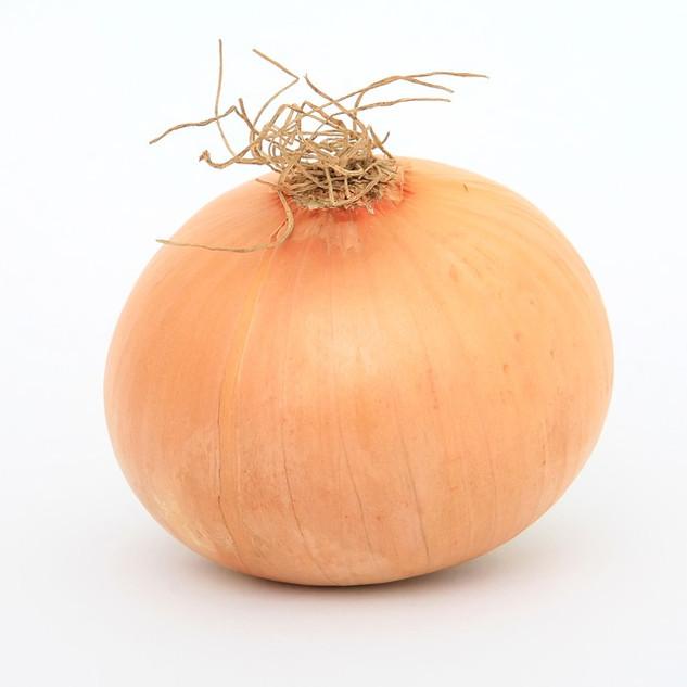 Onion, yellow.jpg
