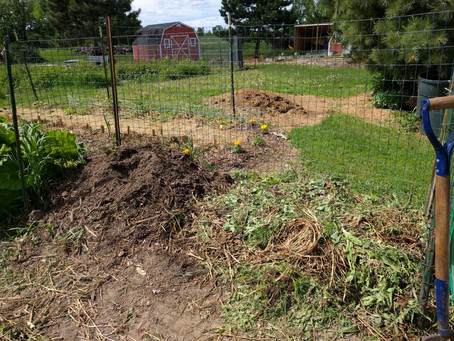 How to Build a Compost Heap