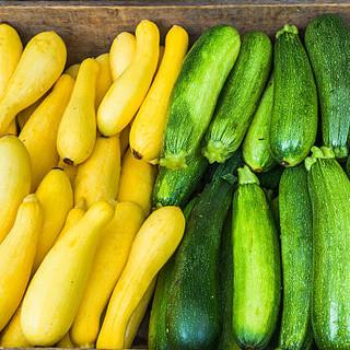 summer squash zucchini.jpg