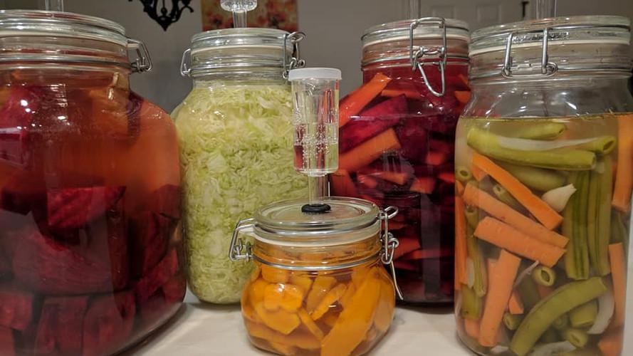 Ferments 5 jars.jpg