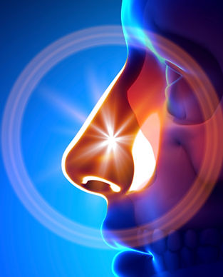 Western Carolina Ear, Nose, & Throat - Nose & Sinus Services