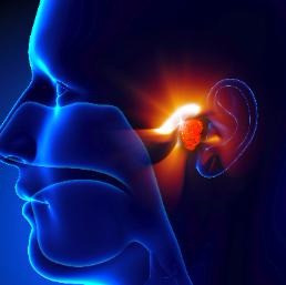 What are the types of hearing loss?