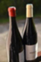 caviste vin Orthez