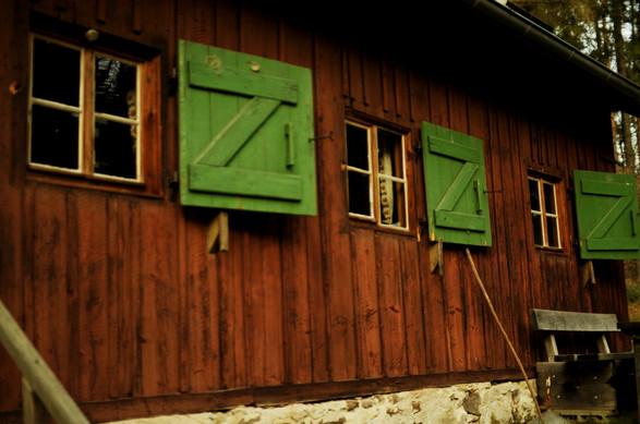 Holzfäller_0008.jpg