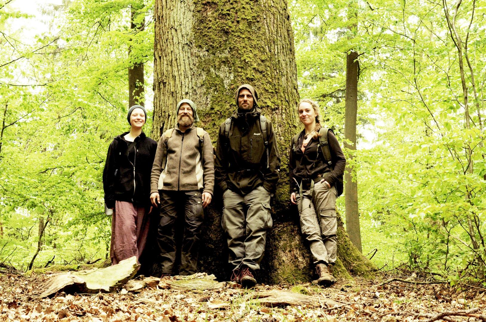 Waldläufer_0001.jpg