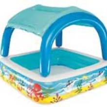 Canopy Play Pool