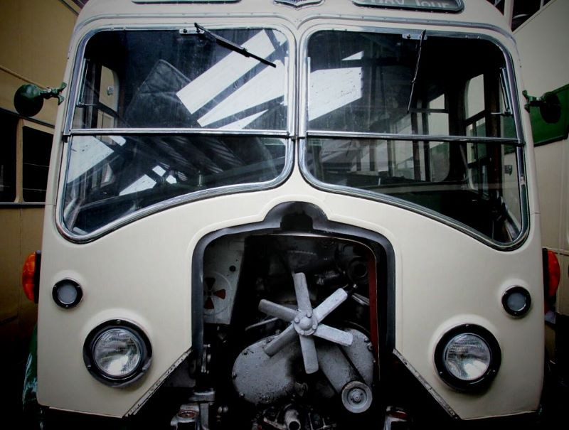 Can buses fly?