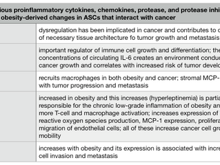 Obesity and Stem Cells - Part V, Cancer