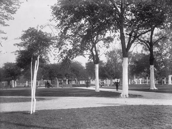 Coliseum Square Park