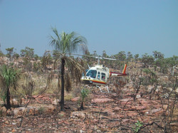 Helicopter_Bush.JPG