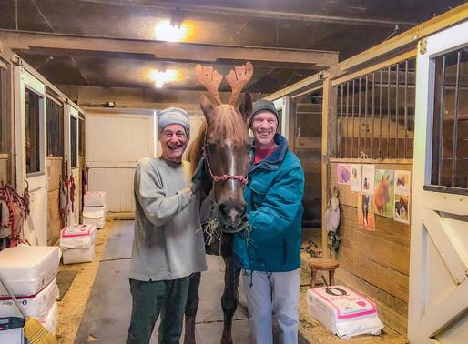 Spirit of Christmas at Carpe Diem Farms