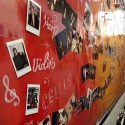 各團及各團員演出的照片已張貼於新的壁報了!快來找找自己的照片吧!#悅藝 #finemusic #violin #cello #har