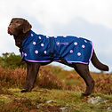 Canine Magnetix Coat