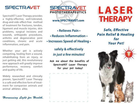 As I Understand It - Laser Therapy
