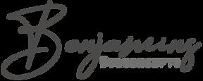 Benjamins-Webconcepts-logo-website-onder