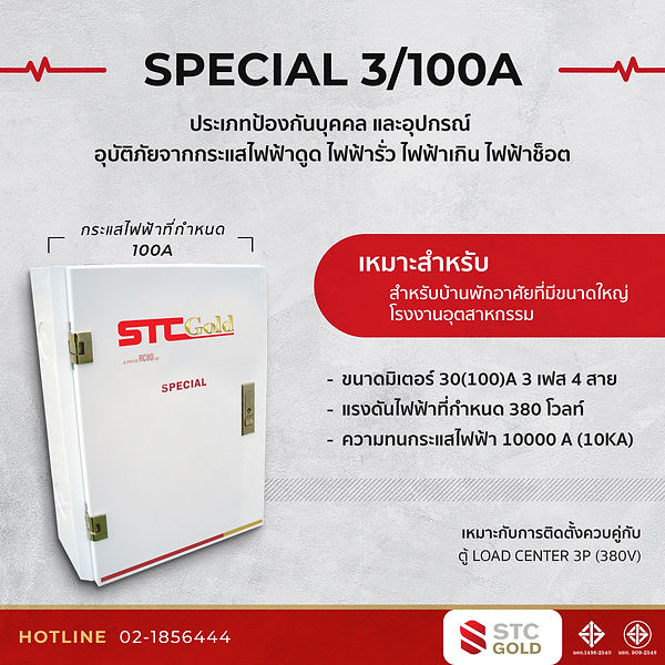 special3_100A.jpg