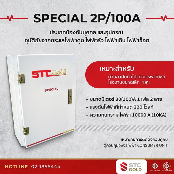 special2P_100A.jpg