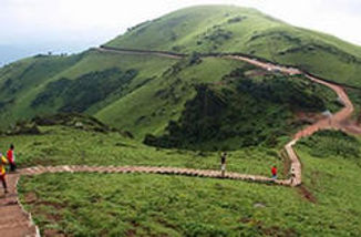 images-karnadaga-hills-chikmagalur-250x2