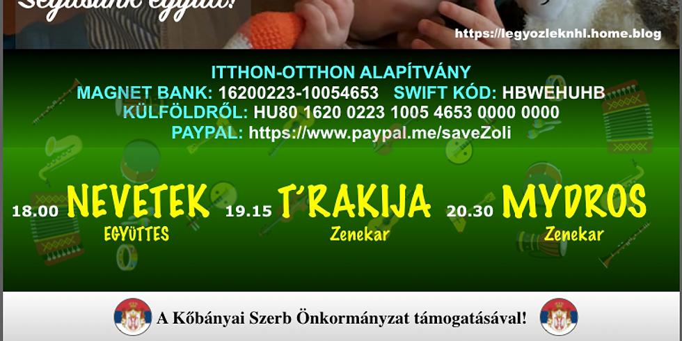 Jótékonysági balkán táncház Zoliért