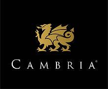 Cambria Quartz.jpg
