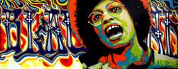 Ananda Nahu - Angela Davis n2  200 x 080