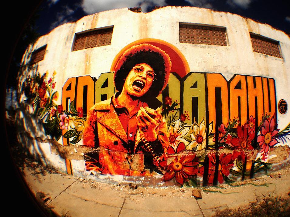 street art   urban art   arte de rua   muralismo   brazilian street art   female artist   angela davis