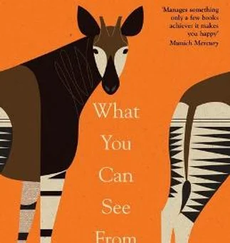 Review: Mariana Leky's What You Can See From Here