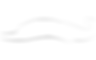 holly-wave-logo-2.png