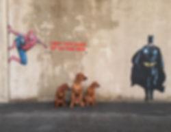 Våre superhelter