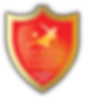 NYCSL logo copy.png
